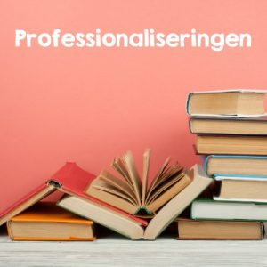Professionaliseringen
